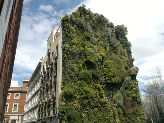 madrid-green-facade